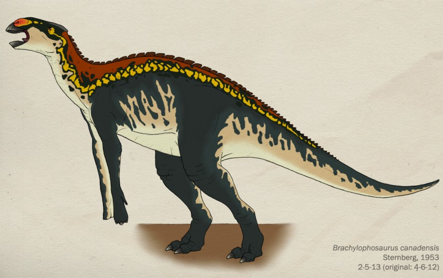 Brachylophosaurus Pictures & Facts - The Dinosaur Database