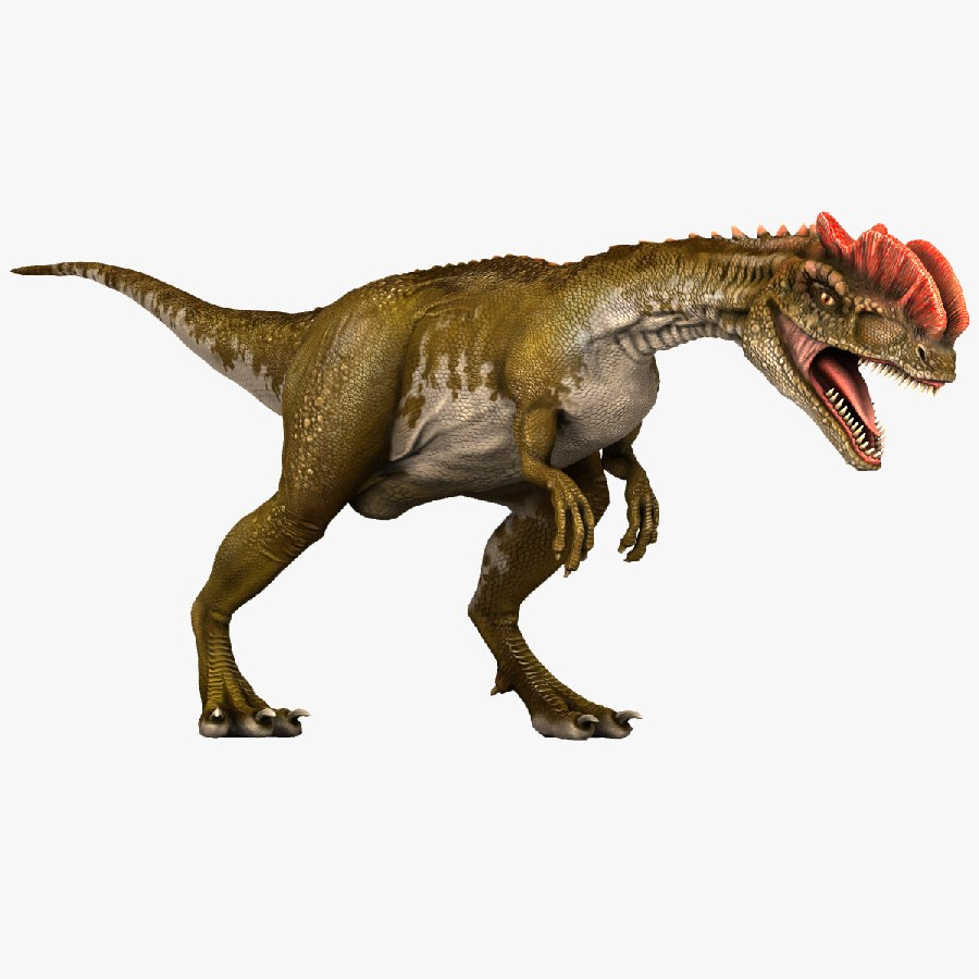 dilophosaurus pictures facts the dinosaur database
