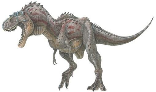 Primeval New World Albertosaurus Albertosaurus Pictures...
