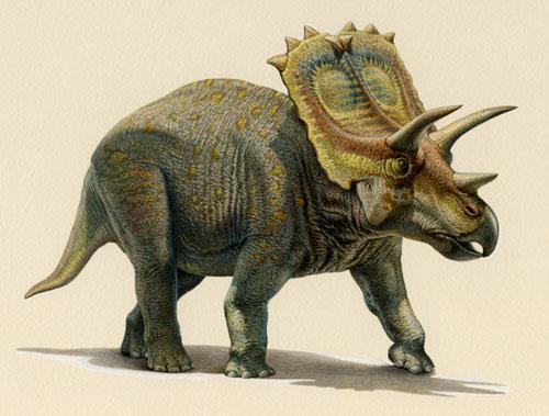Aachenosaurus