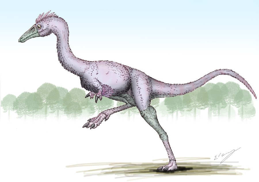 Achillesaurus (Ахиллезавр), Cretaceous (Меловой период)