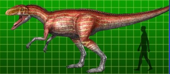 Afrovenator Pictures Facts The Dinosaur Database