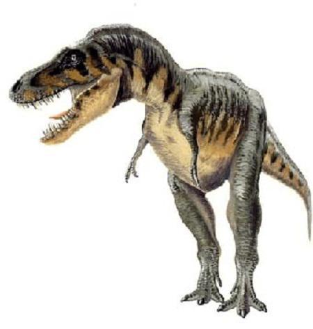 Agrosaurus
