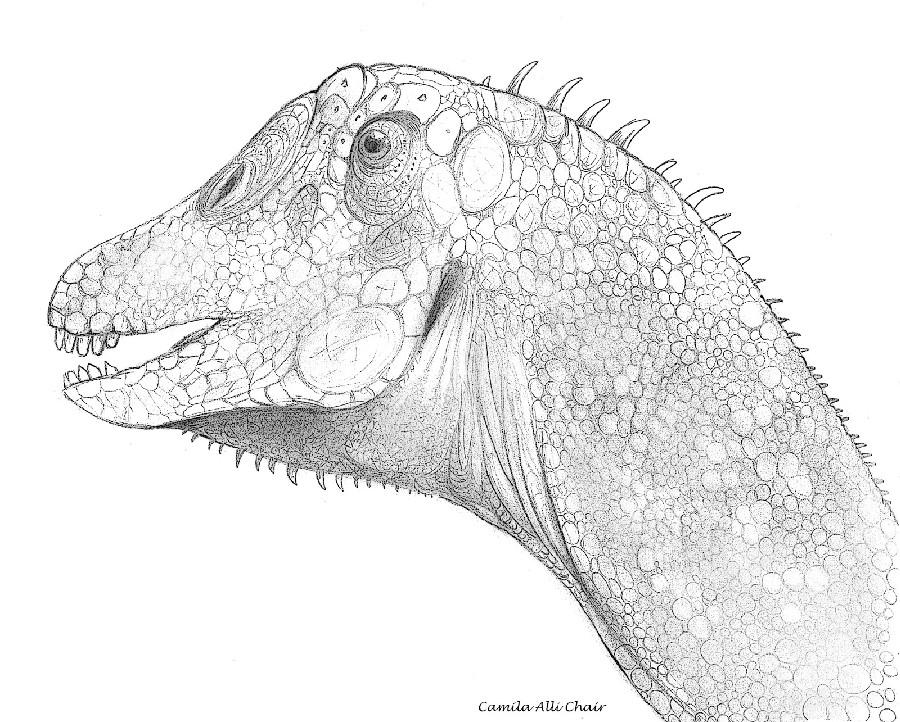 Antarctosaurus