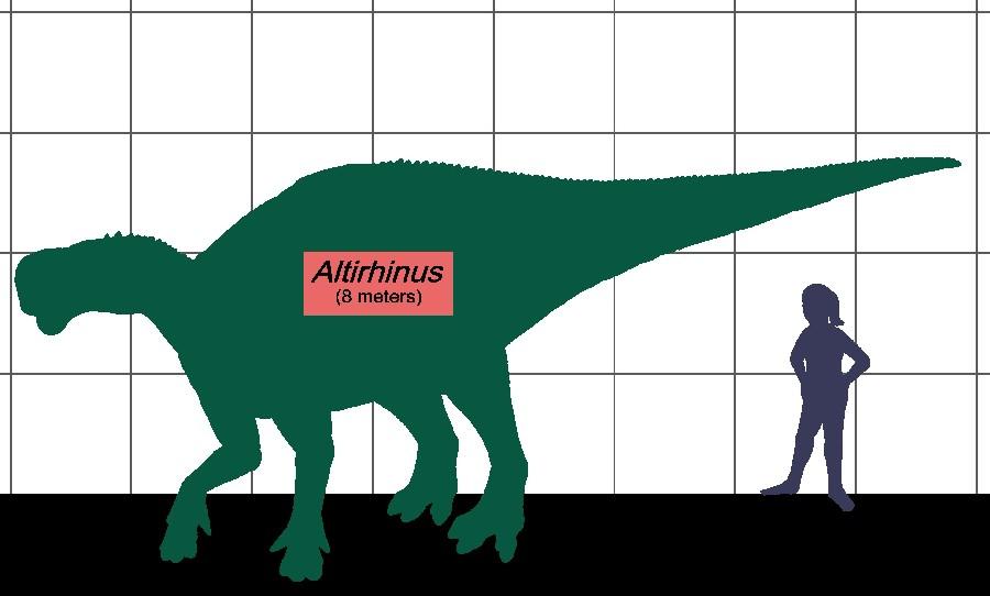 Altirhinus