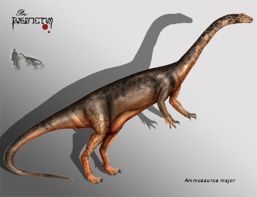 Ammosaurus