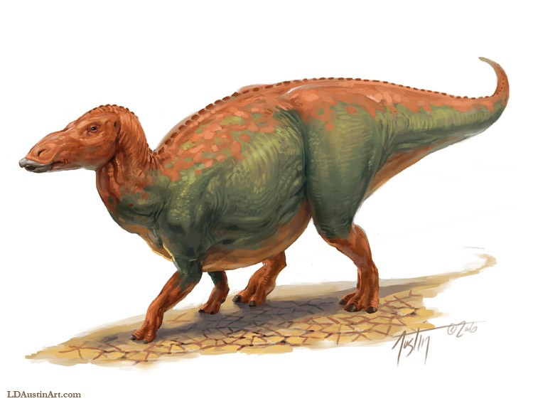 anatotitan pictures & facts the dinosaur database  ?page_id=117 #9