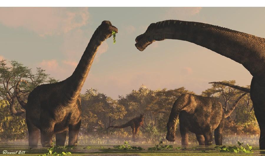 Resultado de imagen para antarctosaurus