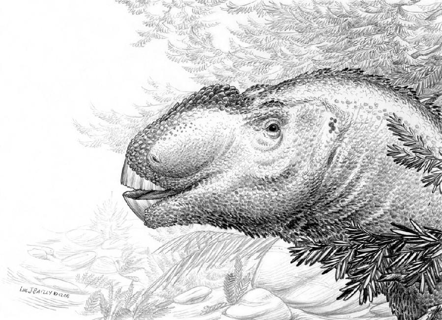 Aralosaurus