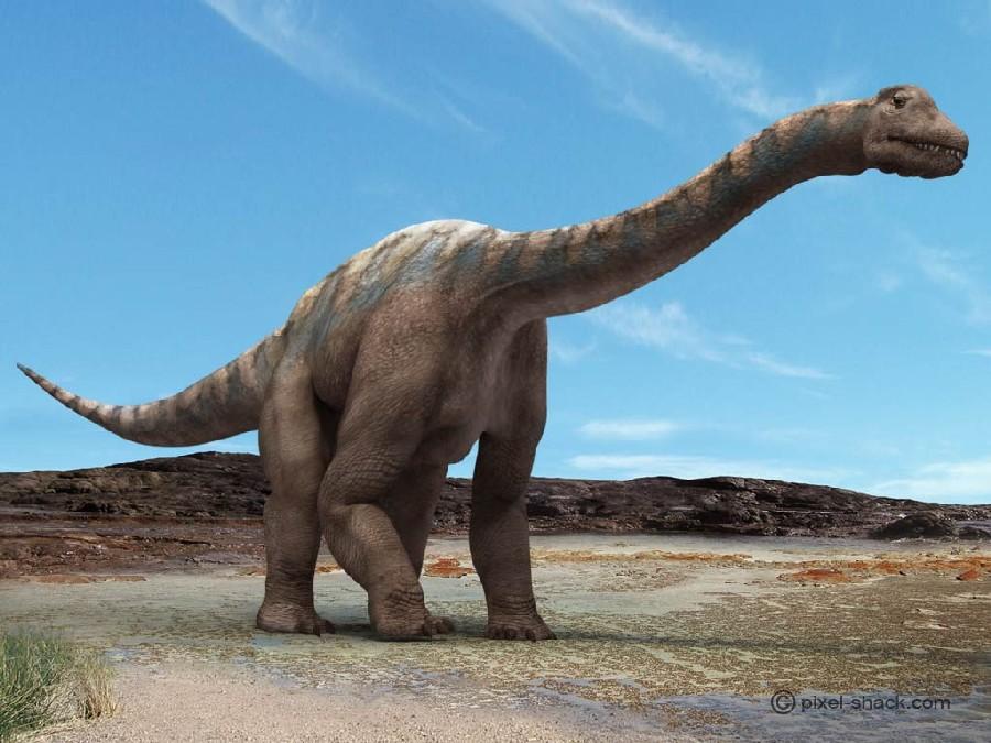 Le refuge de la louve intrépide - Portail Argentinosaurus-1_eb84