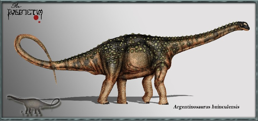 Argentinosaurus Pictures as well 311977 likewise Liopleurodon Pictures likewise Diplodocus Pictures together with Titanosaurus Pictures. on database php