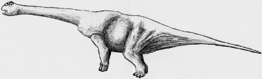 Argyrosaurus