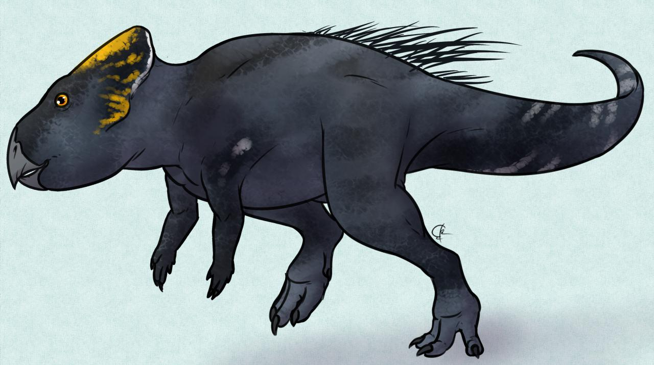 Asiaceratops