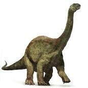 Asiatosaurus