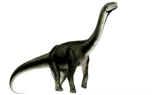 Atsinganosaurus