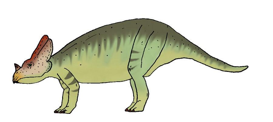 Bagaceratops