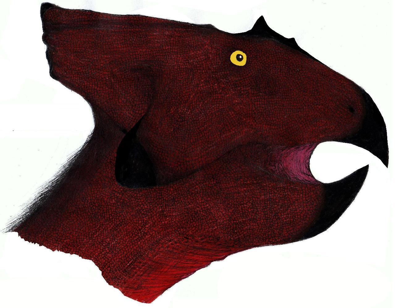 Breviceratops