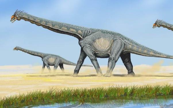 Brohisaurus