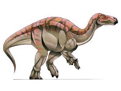 Callovosaurus