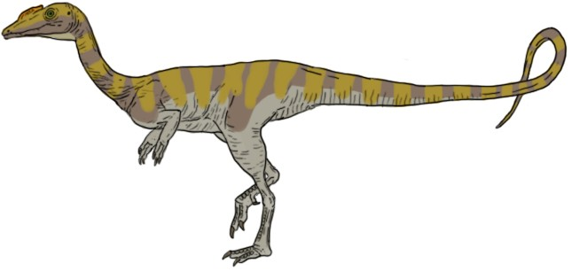 Camposaurus