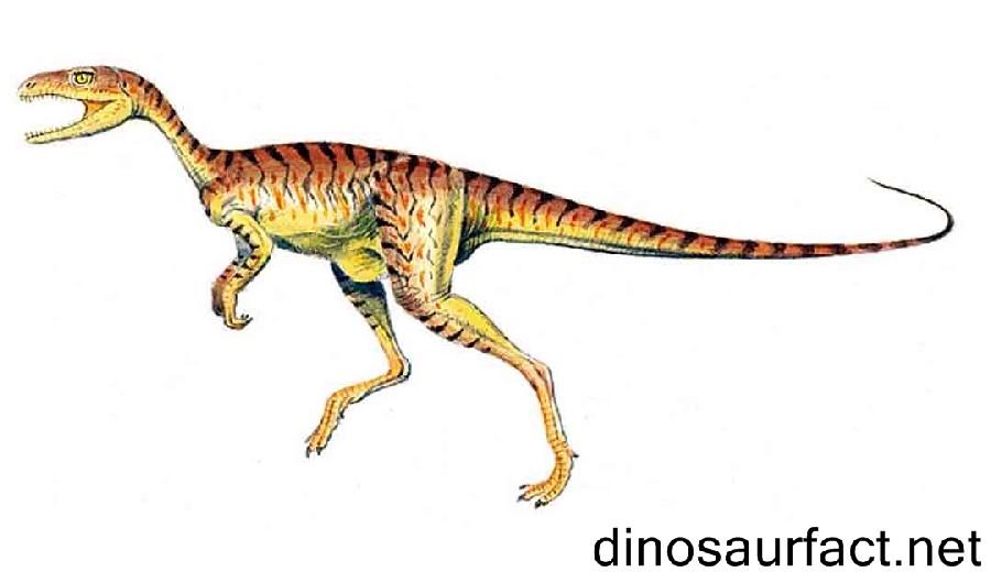 Caseosaurus