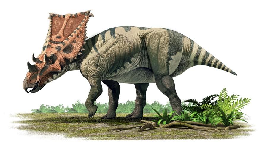 Dinosaur island 1994 - 3 3
