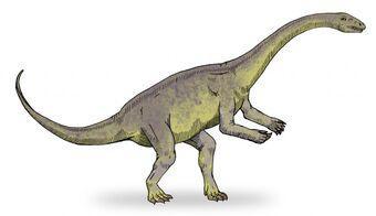 Chebsaurus