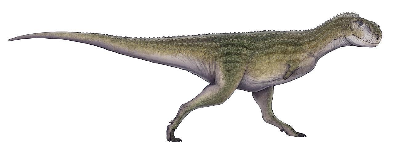 Chenanisaurus