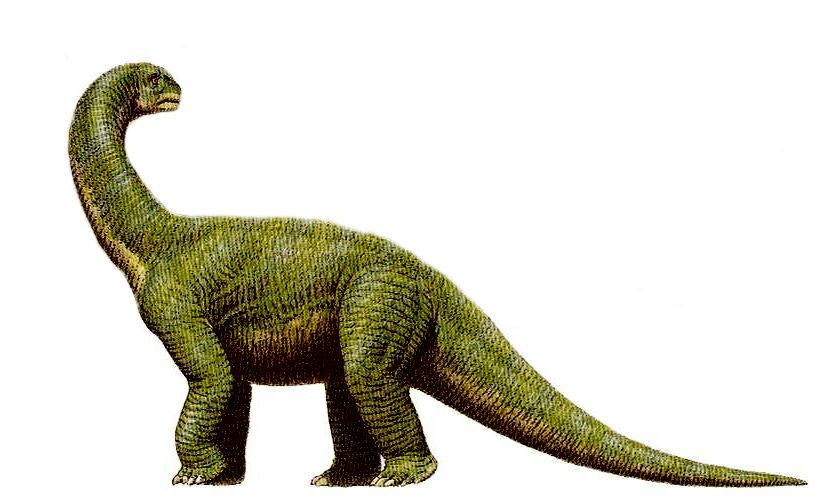 Damalasaurus