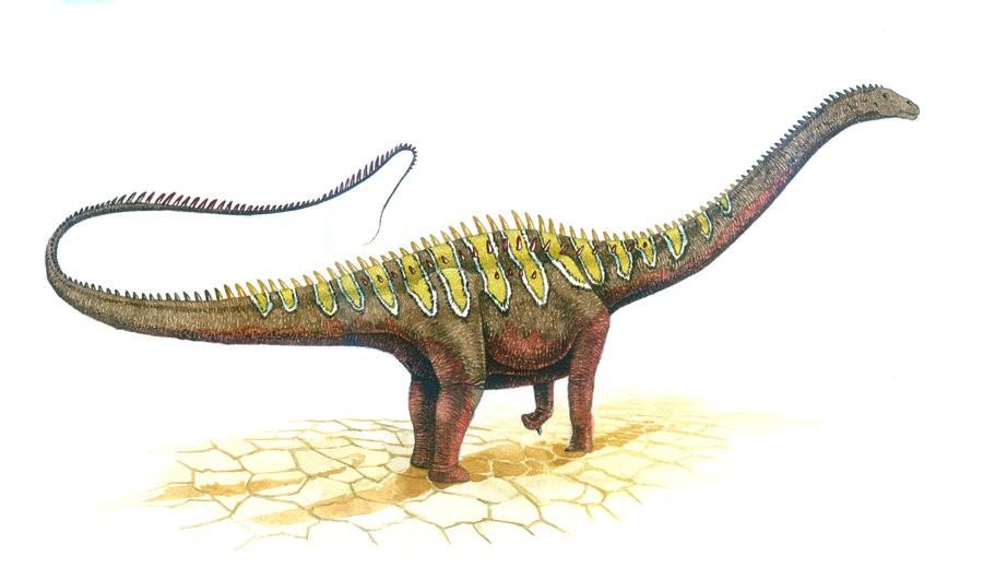 Diplodocus Pictures &a... Ampelosaurus Dinosaur King