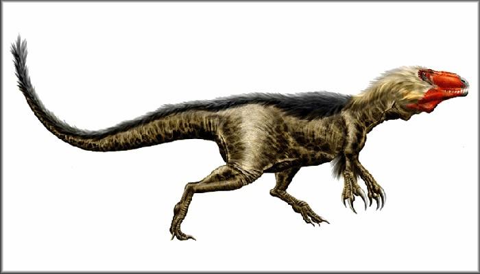 Diplotomodon