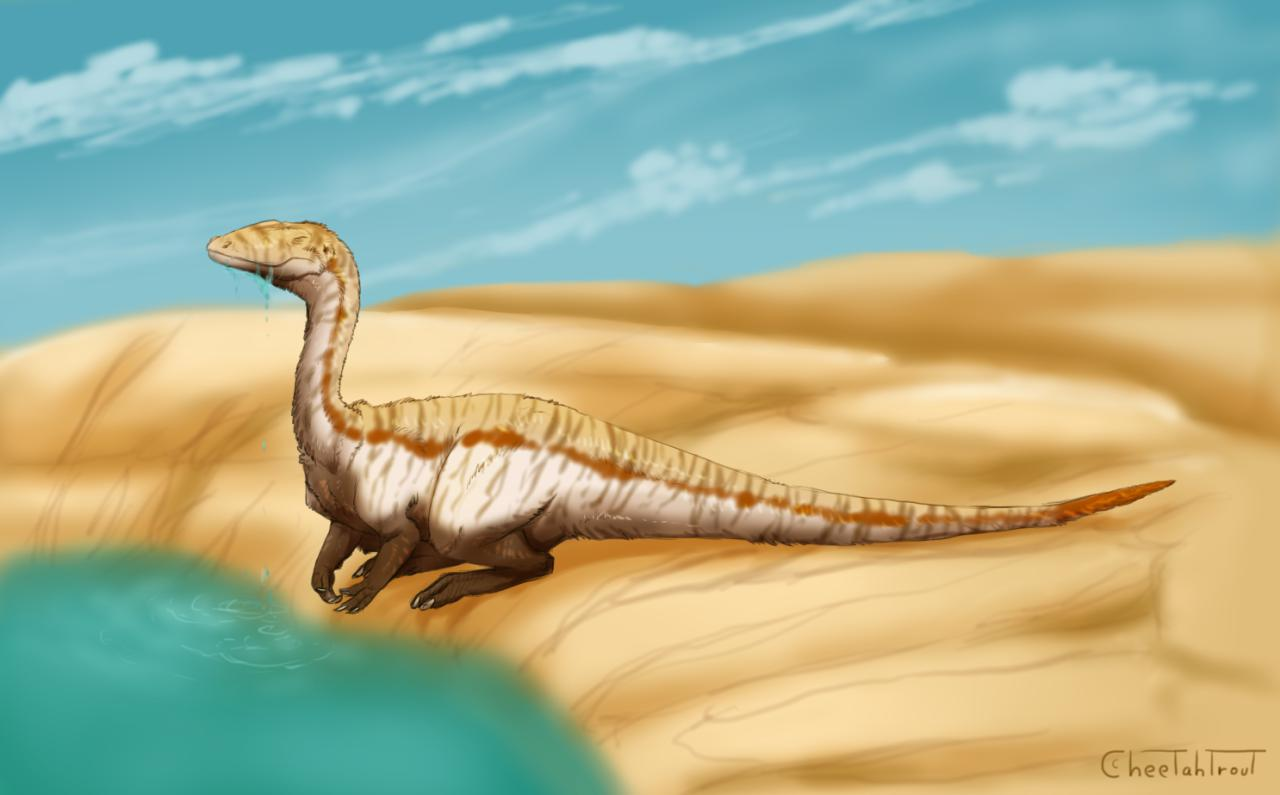 Dolichosuchus