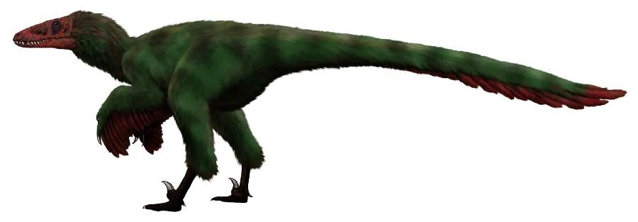 Dromaeosauroides