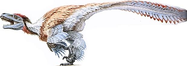 Dromaeosaurus