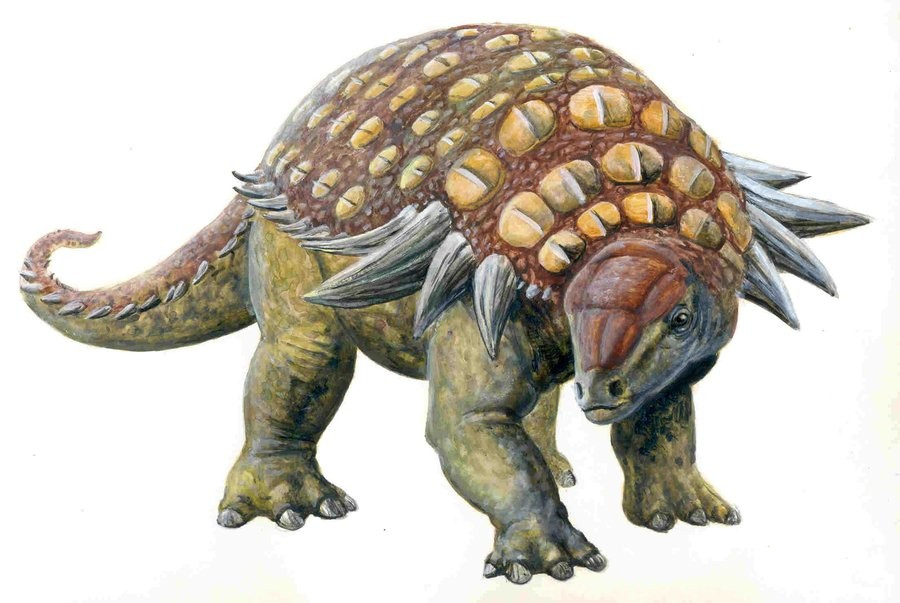 Edmontonia Pictures Amp Facts The Dinosaur Database