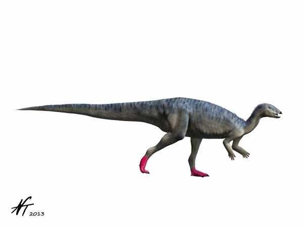 Elrhazosaurus