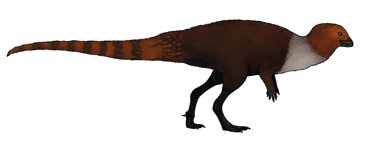 Eugongbusaurus