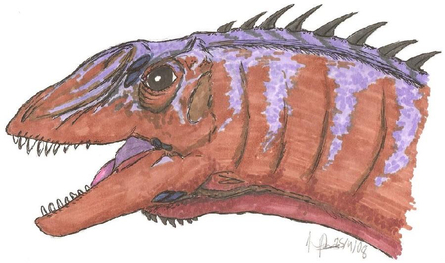 Euhelopus