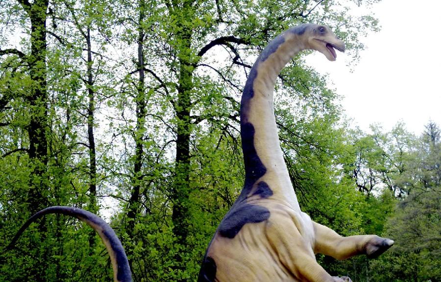 Ferganasaurus