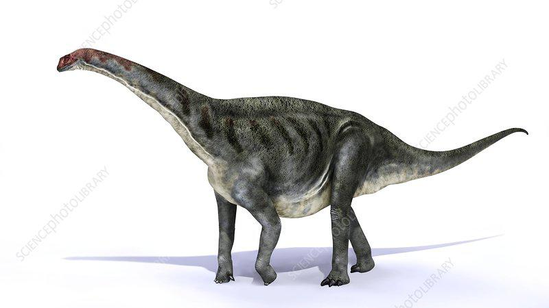 Galvesaurus