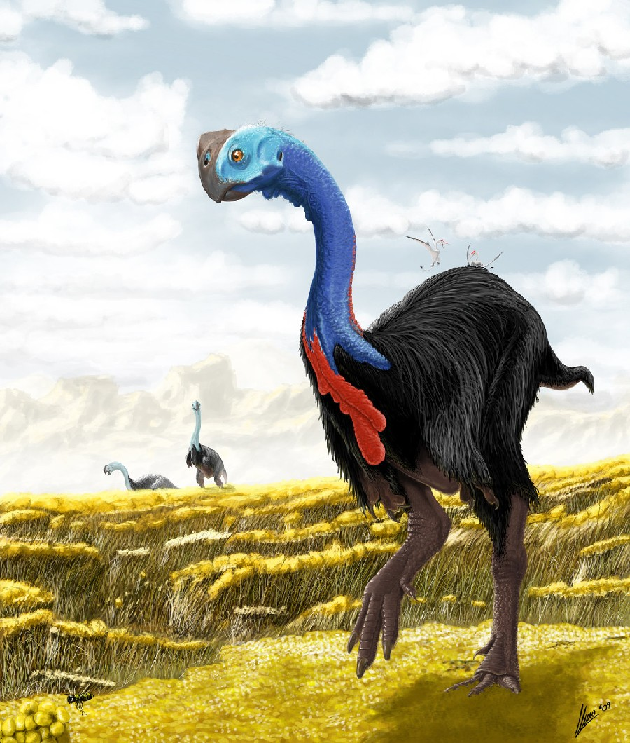 gigantoraptor pictures u0026 facts the dinosaur database