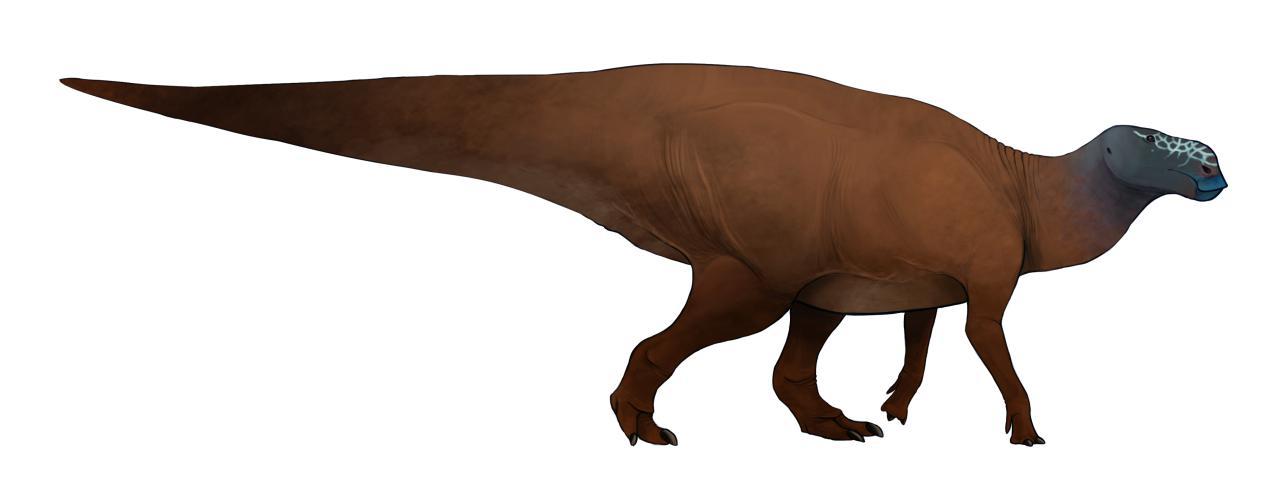Heilongjiangosaurus