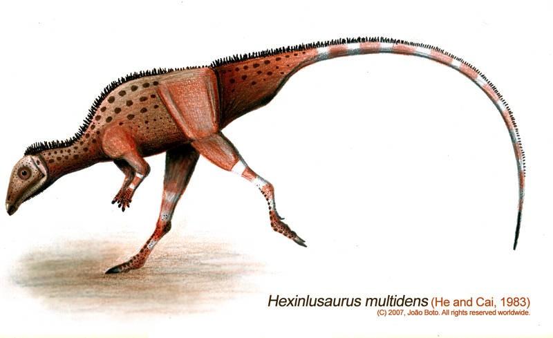 Hexinlusaurus