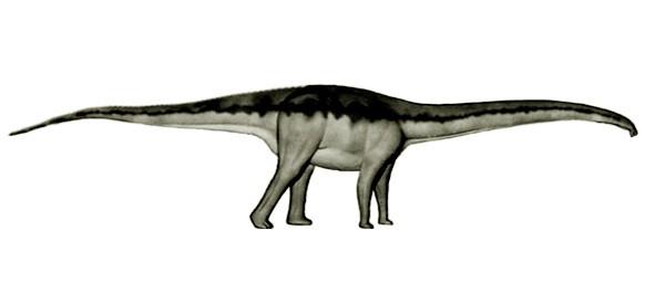 Histriasaurus
