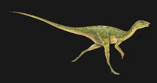 Hypsilophodon