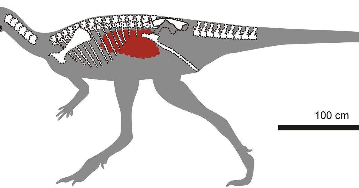 Isaberrysaura