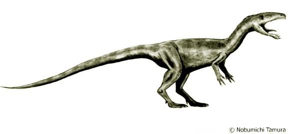 Laevisuchus