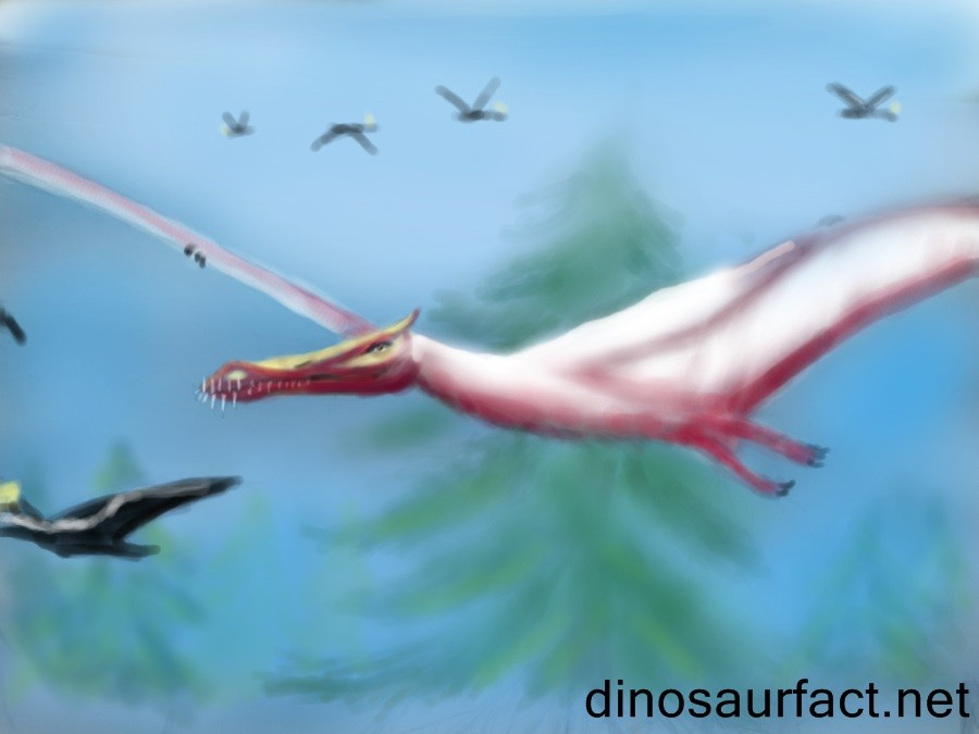 Liaoningopterus