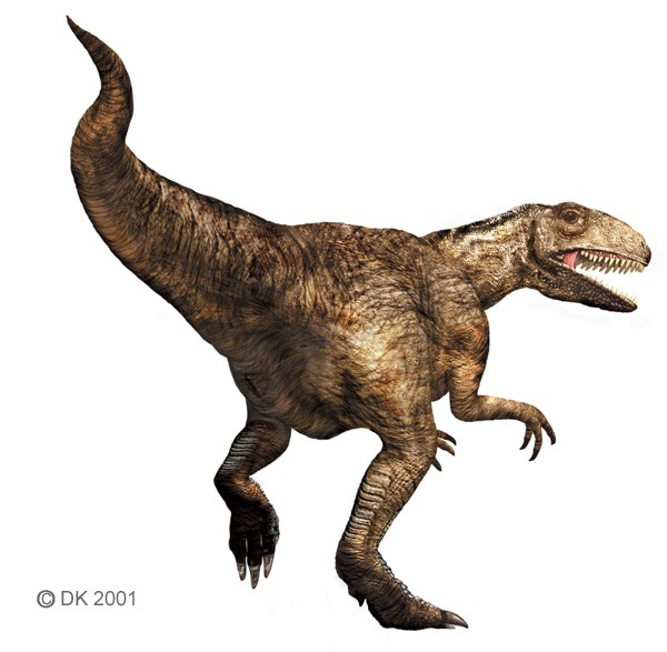 Megalosaurus Pictures & Facts - The Dinosaur Database