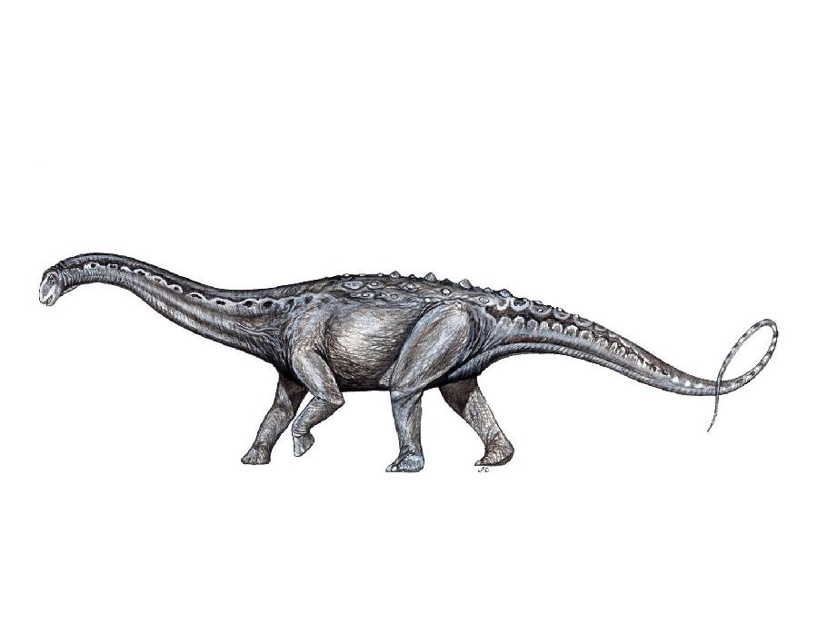 Mendozasaurus